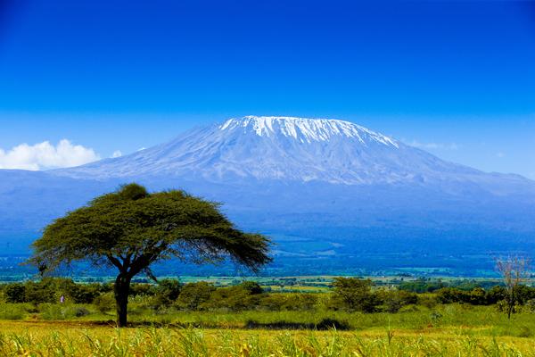 26 июня «Килиманджаро»