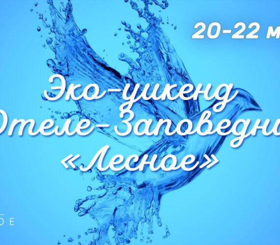 Эко-уикенд в отеле-заповеднике «Лесное» 20-22 марта
